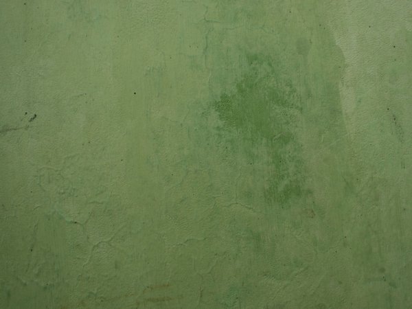 English rose garden wallpaper - Back Gt Gallery For Gt Olive Green Background Texture